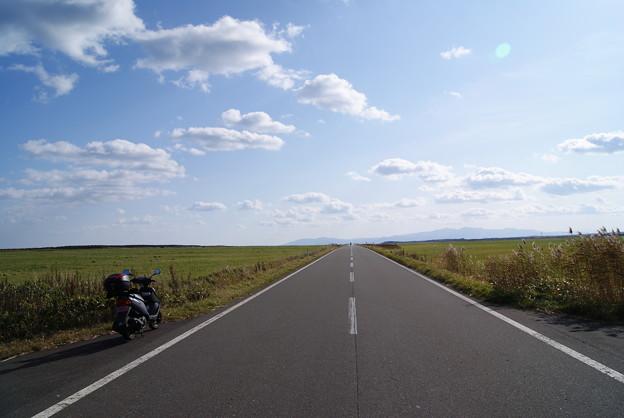 写真: 絶景ロードエサヌカ線