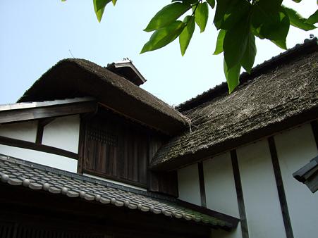090621_難波田城公園_43