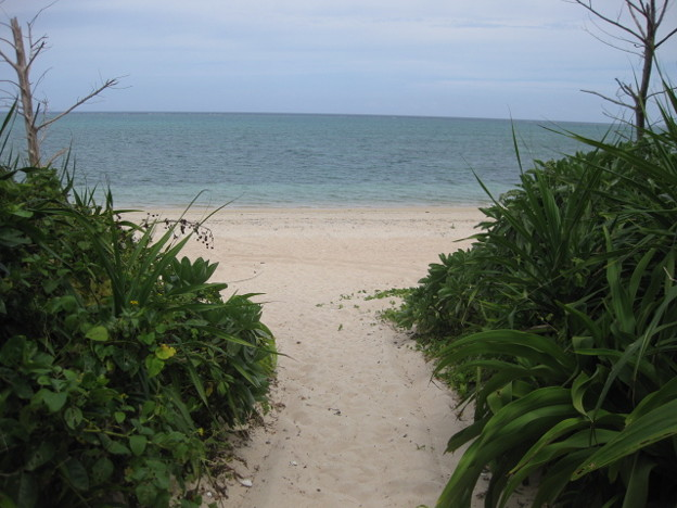 ナータビーチ