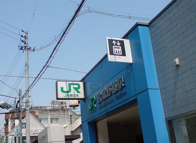 Photos: 宮城野原駅