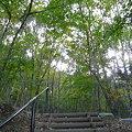 写真: 長命館公園1