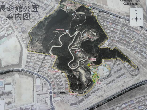 写真: 長命館公園2