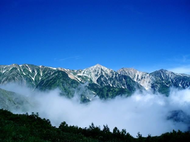 Photos: 八方尾根から望む北アルプス白馬連峰