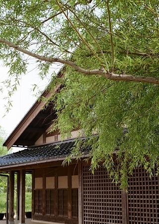 Mizube-kouen_OLYMPUS_PEN_FT_Kodak_PORTRA160NC_05092011-02