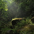 Photos: 鍋ケ滝