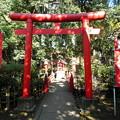 Photos: 世田谷線:宮の坂駅界隈_世田谷八幡宮-03厳島神社c