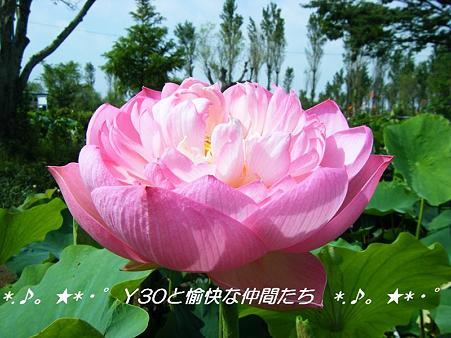 DSCF8812_pa