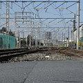 Photos: R0023533