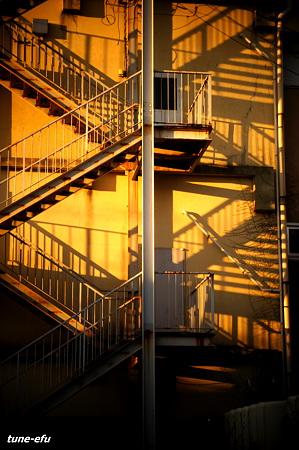 朝日の階段