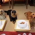 Photos: もうすぐ食べれるかな?