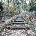 Photos: 御岳山への遊歩道