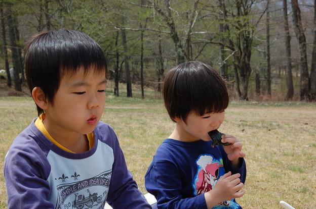 Photos: 五光牧場068