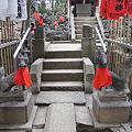 Photos: yoyohachi110206007