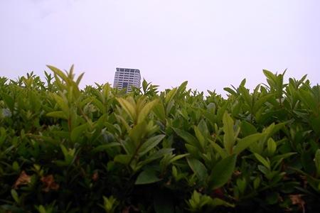 2009-06-03の空