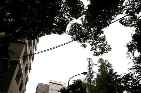 2009-06-14の空
