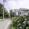 写真: 2009-08-19の空1