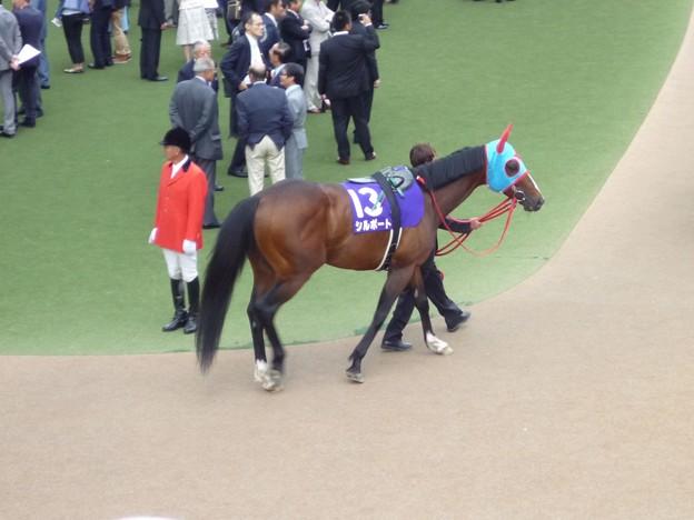 2012安田記念 シルポート