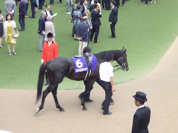 Photos: 2012安田記念 スマイルジャック