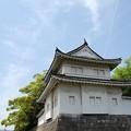 写真: 二条城の櫓から筋が