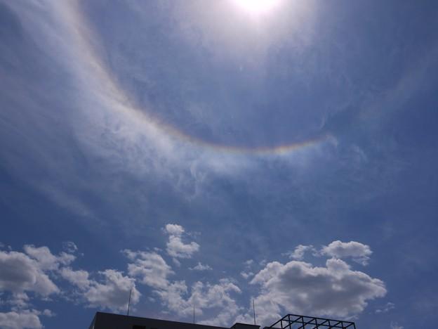 またも彩雲状暈雲 2009.5.20  12h37mi(7)