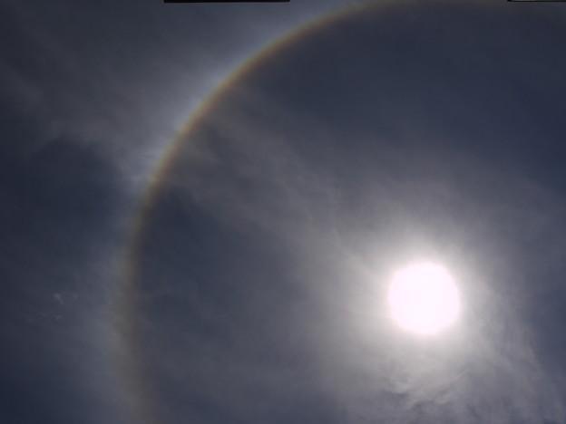 またも彩雲状暈雲 2009.5.20  12h32mi(4)