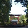写真: 北口本宮浅間神社・ 二ノ鳥居