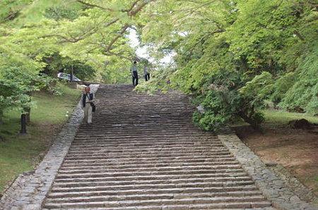 東大寺 猫段