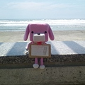 Photos: 木崎浜海岸で1