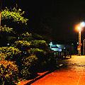 Photos: 阿字ヶ浦駅 追憶のホーム