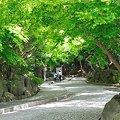 Photos: 20110502_125524