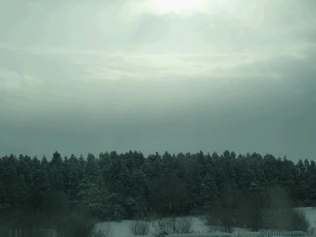 03 冬の日差し