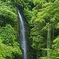 幻の滝 (虹の滝)