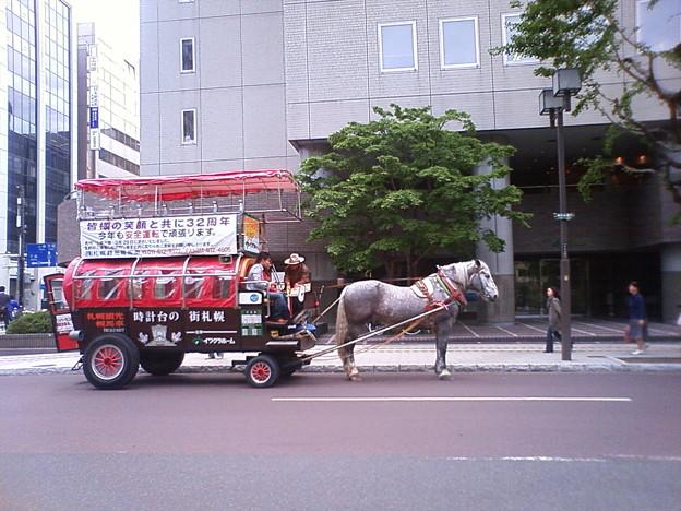 観光馬車3