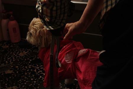 洗われてます