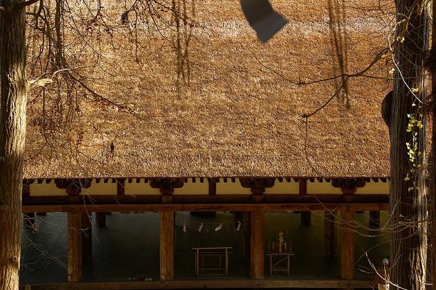 長床の屋根