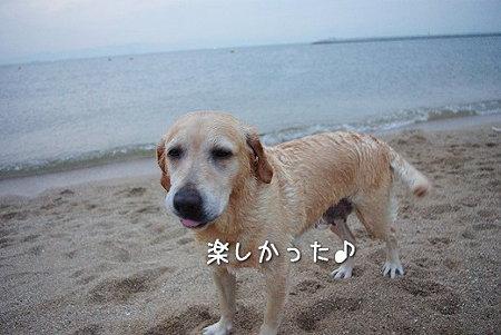 s-myu2009_0627(249)