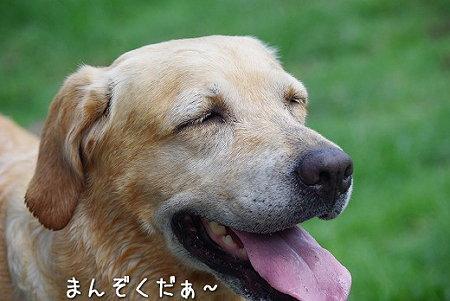 s-myu2009_0702(138)
