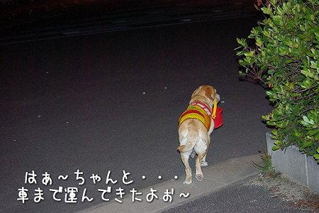 s-myu2009_0702(313)