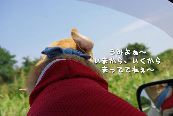 s-myu2009_0829(038)