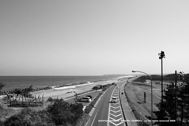 海と道路と