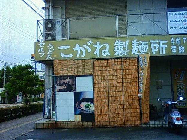 こがね製麺所 善通寺本店@善通寺(香川)