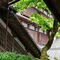 Photos: 中庭