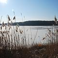 Frozen Water 12-11-10
