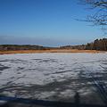 Me in the Frozen Salt Marsh