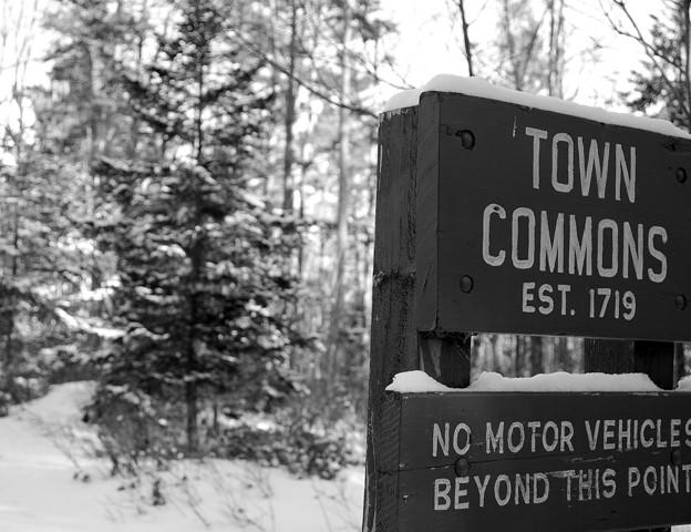 写真: Town Commons 1-9-11