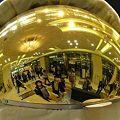 金色のパノラマ