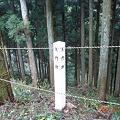 DSC05233 村上城跡