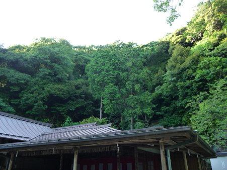 090612-銭洗弁天 (9)