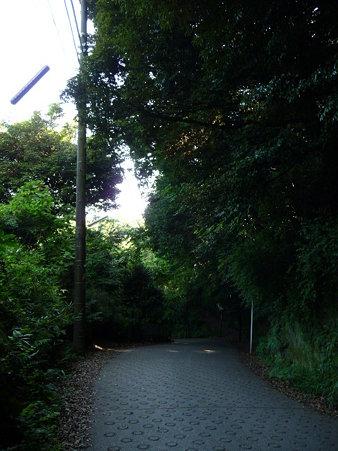 090612-通学路 (6)