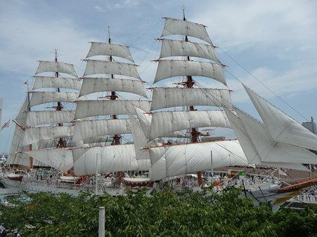 090720-日本丸 総帆展帆 (96)